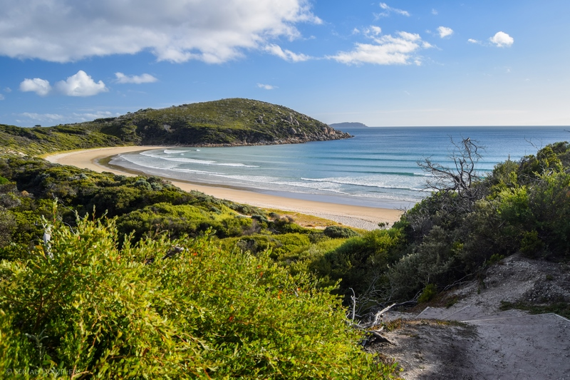 serial-travelers-australie-wilsons-promontory-national-park-picnic-bay4