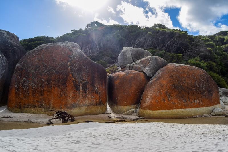 serial-travelers-australie-wilsons-promontory-national-park-squeaky-beach10