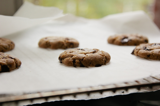 Mulled Brown Butter Chocolate Chip Cookies from London Bakes // Serious Crust by Annie Fassler