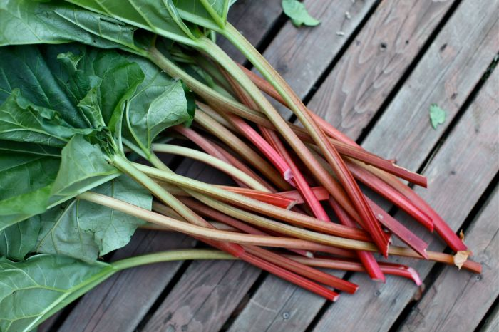 MORE RHUBARB on Weekend Finds // Serious Crust by Annie Fassler