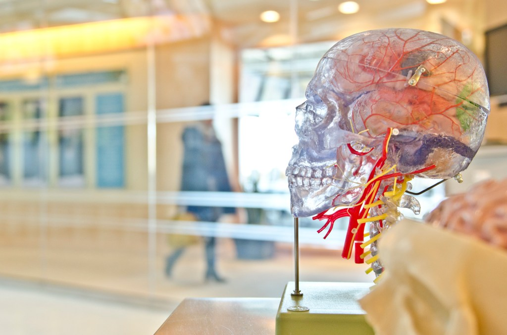 Traumatic brain injuries can occur in a car wreck and should not be taken lightly.