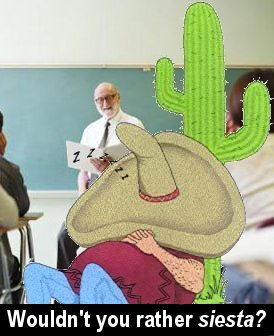 How'd a cactus end up in the classroom?