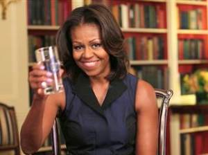 Michelle Obama drinks to predictable partisan political punditry.
