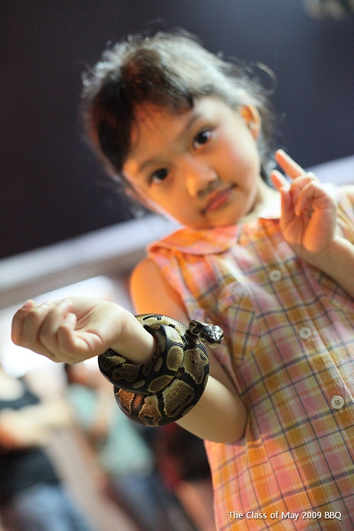 Yap's daughter with my eldest son's pet, April, a Boa Phyton... Kids nowadays... Urghh...
