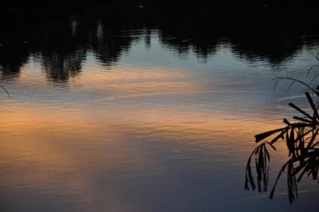 Merimbun Sunsets 098