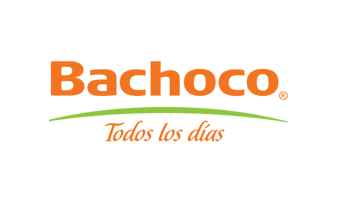 logo bachoco