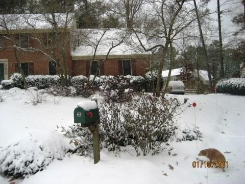 Atlanta Snowpocalypse 2011