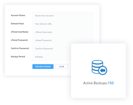 SERPed Review- website backup tool