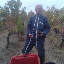 Michel qui a vendangé la dernière grappe de notre premier millésime!