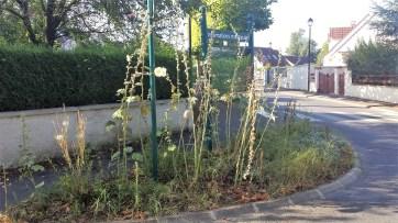 Rue de la Marnière - No Comment