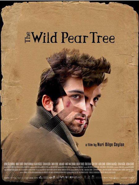 Nuri Bilge Ceylan Ahlat Ağacı Poster, The Wild Pear Tree İzle