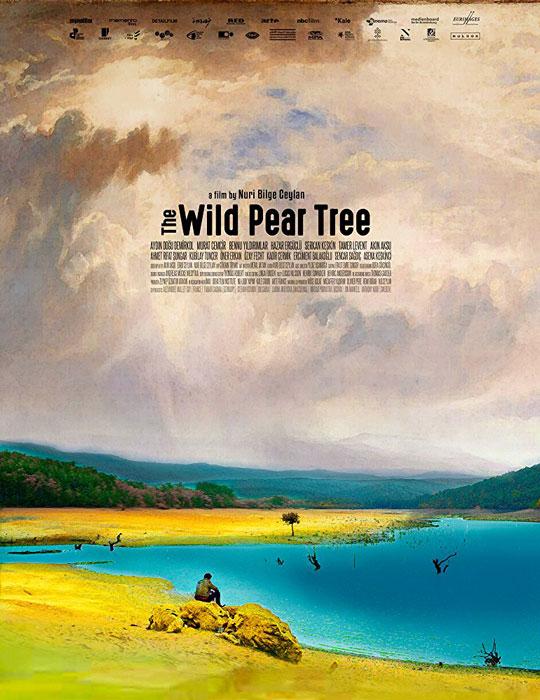 Oscars Nuri Bilge Ceylan's 'The Wild Pear Tree' Is Turkey's Foreign Language Entry