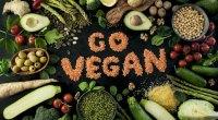 Dünya Vegan Günü 1 Kasım Kutlu Olsun! Vegan Beslenmek