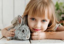 8 Manfaat Memiliki Hewan Peliharaan di Rumah untuk Kesehatan Mental Anak
