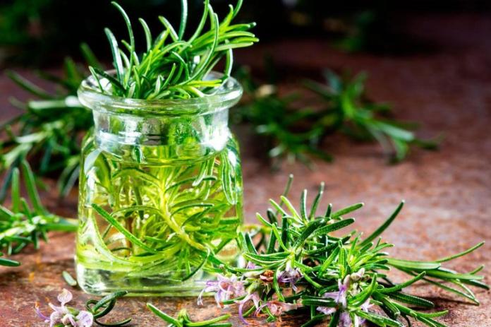 8 Jenis Aromaterapi yang Dapat Meningkatkan Konsentrasi Saat Bekerja