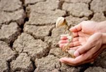 5 Bukti Perubahan Iklim Bumi yang Semakin Nyata Mengancam Kehidupan