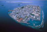 El site Bored Panda estima que las islas Maldivas se inundan a causa de la accion humana y el cambio climático se calcula que les quedan unos 50 años a flote