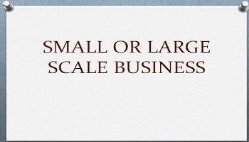 small or large scale business