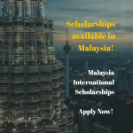 Malaysian International Scholarship