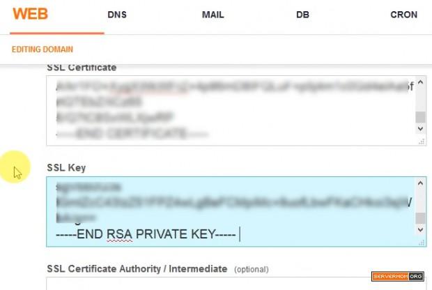paste ssl private key