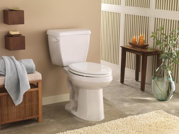 tips membuat toilet