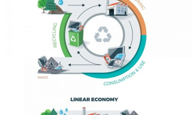 The circular economy: The importance of remanufacturing for productivity -by Ron Giuntini and Kevin Gaudette