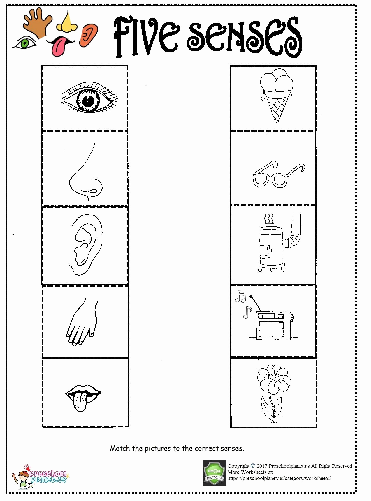 Worksheet For Kindergarten Senses Servicenumber