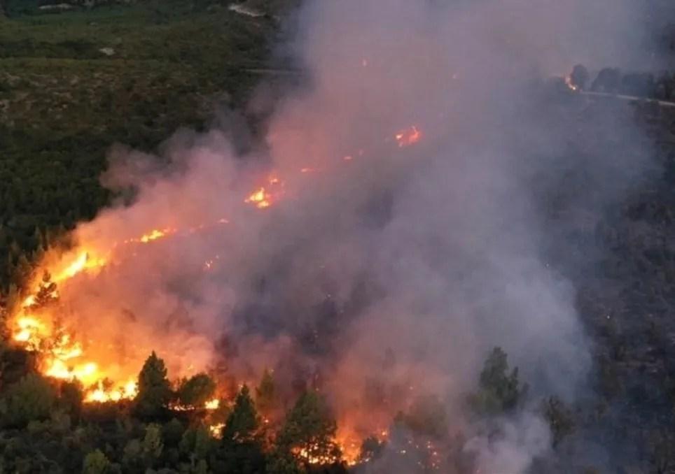 Resultado de imagen para incendios el bolson