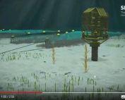 kingfisher_animation_oilandgas