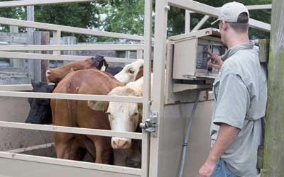 Portability Comes to Farm Scales