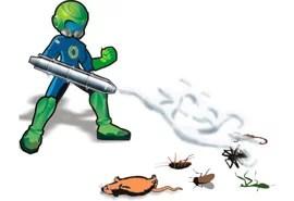 control de plagas servicities