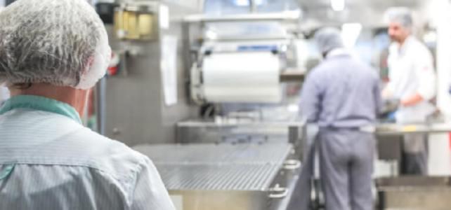 Muncitori fabrica de ciocolata
