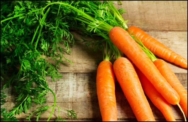 Fun Facts of Carrots Serving Joy Inspire Through Sharing