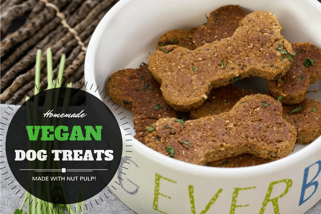 Homemade Vegan Dog Treat Recipe (with Nut Pulp!)