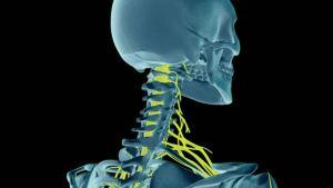 durerea de gât