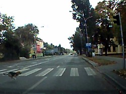 uvs111017-002small2