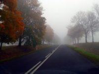 mgla_nauka_jazdy_zamosc