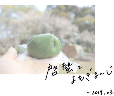 啓蟄とよもぎまんじゅう【和菓子と二十四節気】