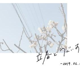 立春とうぐいす餅【和菓子と二十四節気】