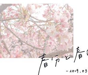 春分と春風【和菓子と二十四節気】