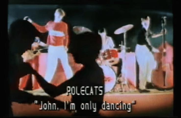 polecats