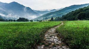 Doux chemins de randonnée !
