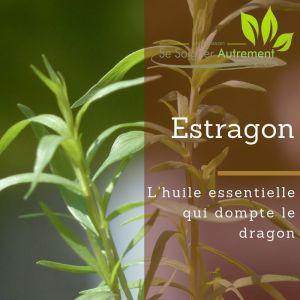 Fiche solution-phyto #17 – Huile essentielle d'Estragon