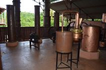 Un alambic transmute la plante en huile essentielle. La distillation est un acte d'alchimie !
