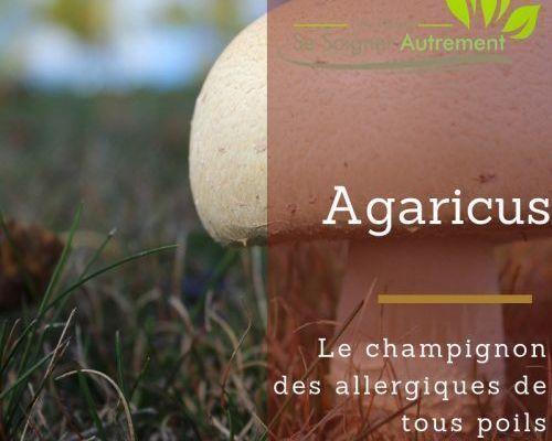 hydrolat d'agaricus