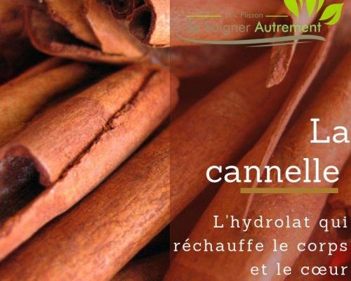 hydrolat de cannelle