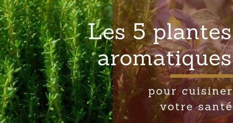 Les 5 plantes aromatiques pour cuisiner votre santé
