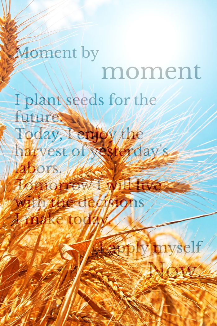 Personal Productivity poster - HARVEST