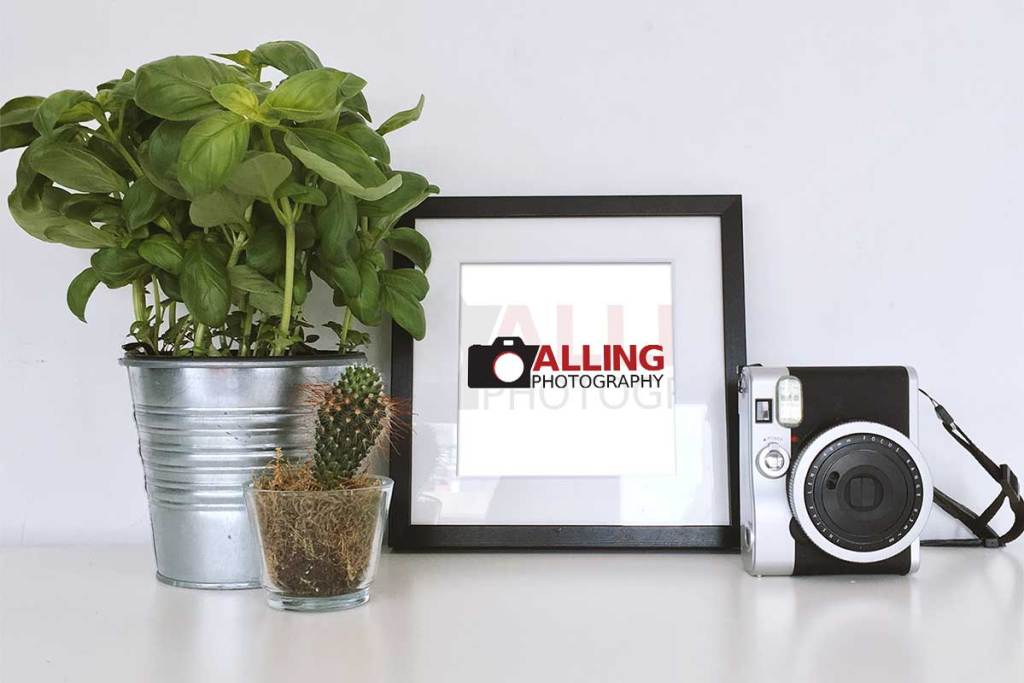 alling-photography-portfolio