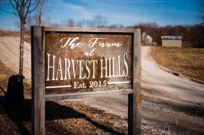 The Farm at Harvest Hills Wedding